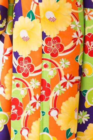 【15-323】黄緑・紫・オレンジ/梅・黄椿・橘・菊の衣装画像3