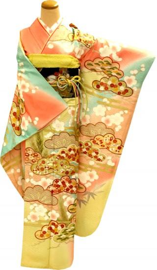 染めの北川の振袖 23点フルセット 正絹(シルク100%)