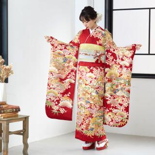 赤 松桜に桧扇 (R1714)