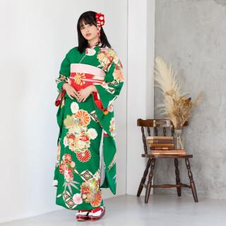 緑 大輪桜松菊 (R1620)