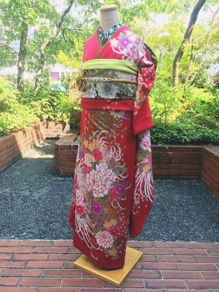 茜色 菊 牡丹 桜