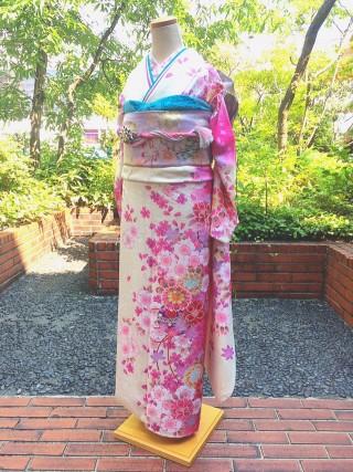 白 桜 鞠