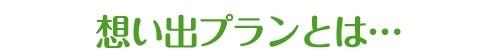planmidashi_01_result