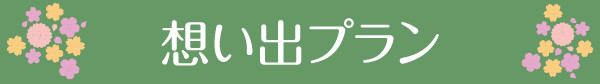 sp-kakakumoto_03