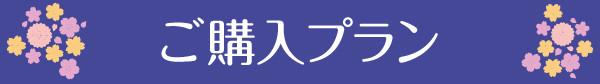 sp-kakakumoto_02