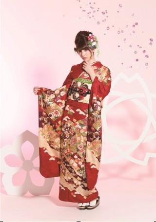 カタログ FS掲載柄 1205の衣装画像2
