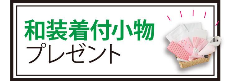 kantou_set_rise_3