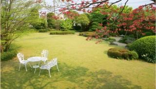 (株)竹内写真館 振袖GALLERY ミンクの店舗画像1