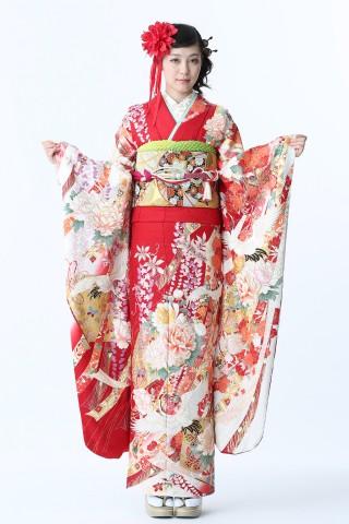 No.37742 限定ブランド「ミモア」Premium 春一番