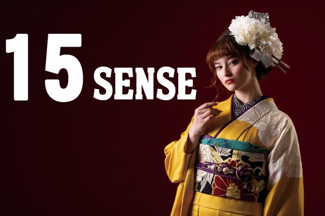 15 SENSE