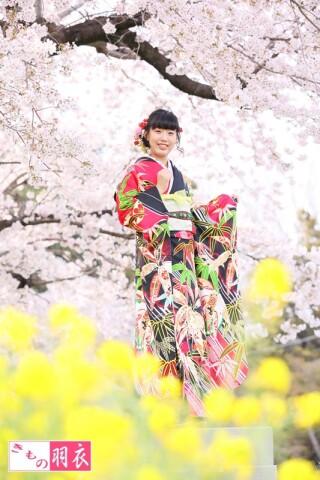 春・羽衣ロケーション撮影