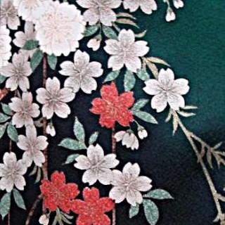 2015年成人式振袖レンタル 商品番号235 グリーン裾枝垂桜 39,800円の衣装画像2