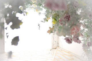 FURISODE ARCアリオ鳳店の店舗画像2