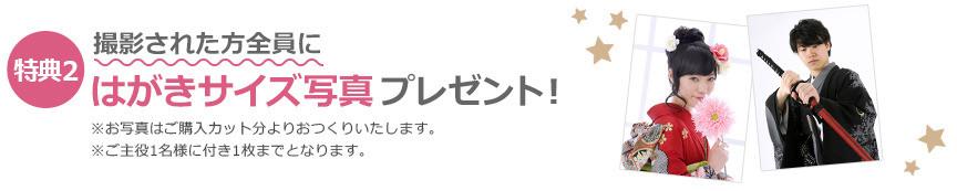 成人記念 前撮・後撮キャンペーン 写真館ピノキオ【公式サイト】 (2)