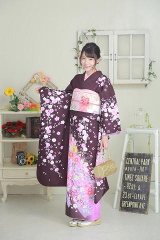 シックな紫に桜の柄のお着物