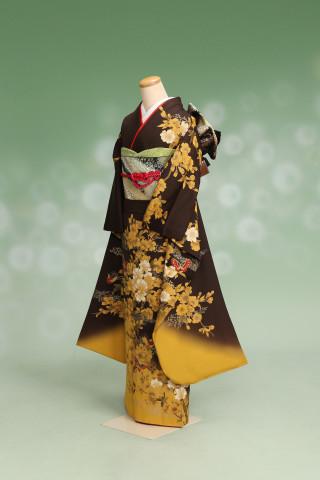 プリンセス神戸_茶振袖の衣装画像1