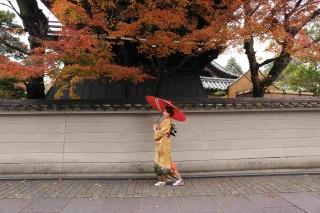 ロケーション撮影専門 ギャラリア神戸北野・京都の店舗画像4