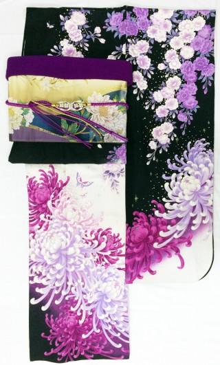 《レンタル》白×黒×菊