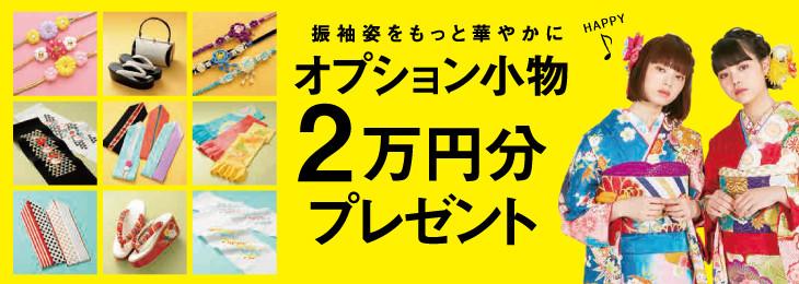 kikaku_option