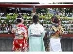 狭山 八幡神社フォトスタジオの店舗サムネイル画像
